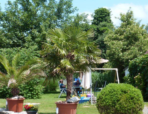 Der hintere Garten