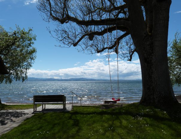 Die Schaukel am See